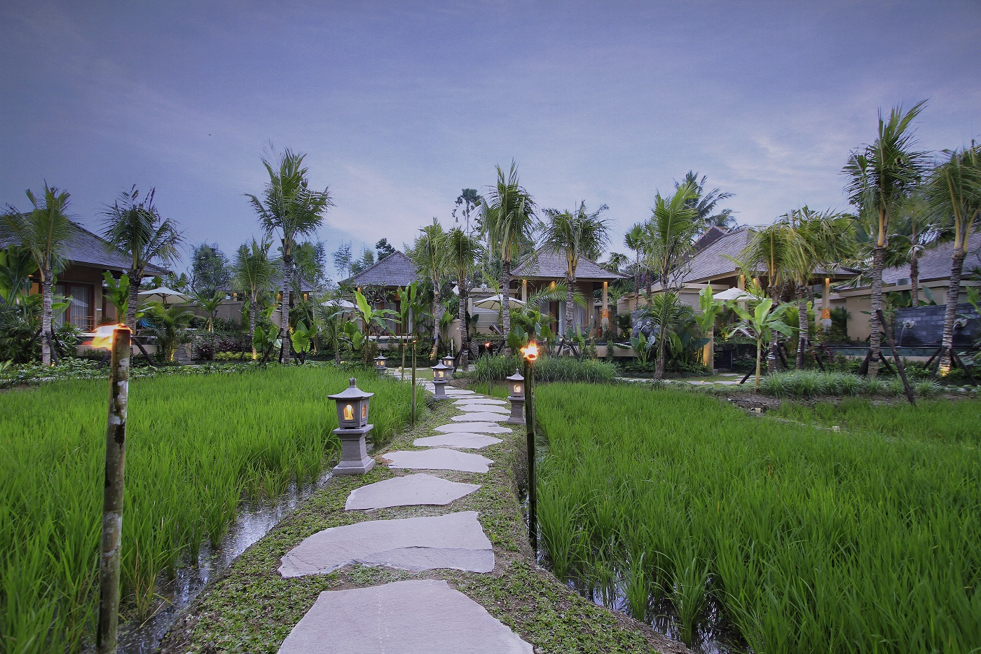 Sankara_Bali